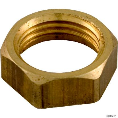 Hex Nut, Pentair Purex CF with 800/SMBW